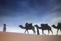 camel ride Morocco desert tour