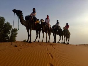 camel ride from the village of merzouga two the camp