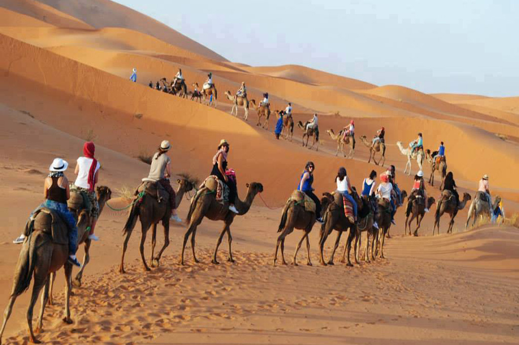 Camel trek in sahara desert of Erg Chebbi Morocco